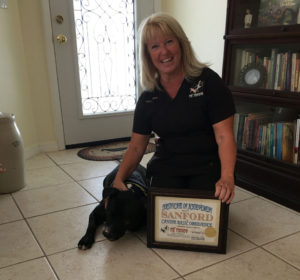 dog-trainer-pinellas